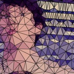 Conviértete en un polígono #netart