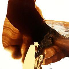 Extra-desiertos, pintura en movimiento #arte