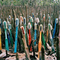 La conolización del plástico #DiaDeLaTierra #reciclaje