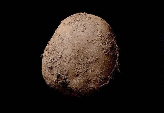 La patata de un millón de dólares #fotografía